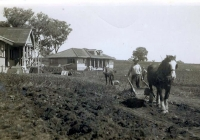 10 Molong & Brown Cottages