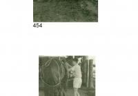 Alb No2 P454 & 455