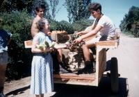 39 Micky Ellis & Bob Wilson delivering Vegetables. Mr Hatto a Cottage Mother