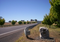 1366 On the Outskirts of molong