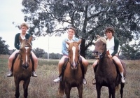 1170 Lilian Henderson,Ann Barlow & Norma Gidman.