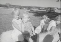 1172 Horse Riding 1964