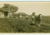 13 Molong & Brown Cottages