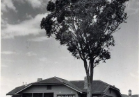 New Cottage 3