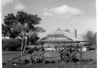 8 Red Cottage c1961