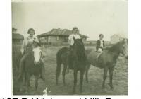 Alb No1 P184, 185, 186 & 187